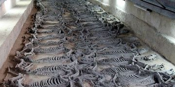 Çindeki 2400 yıllık At ve Savaş Arabası mezarlığında kazılar sürüyor