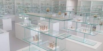 Kıbrıs Herbaryum ve Doğa Tarihi Müzesi açıldı