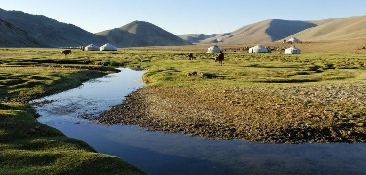 Moğolistan'a gidecek turistler hıyarcıklı veba salgınına karşı uyarıldı