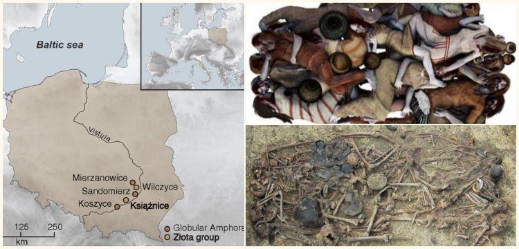 Polonya'da 5 bin yıllık mezardaki kemikler aile katliamını ortaya çıkardı