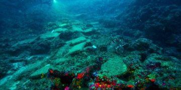 Antalyadaki dünyanın en eski gemi batığı UNESCOda tanıtıldı