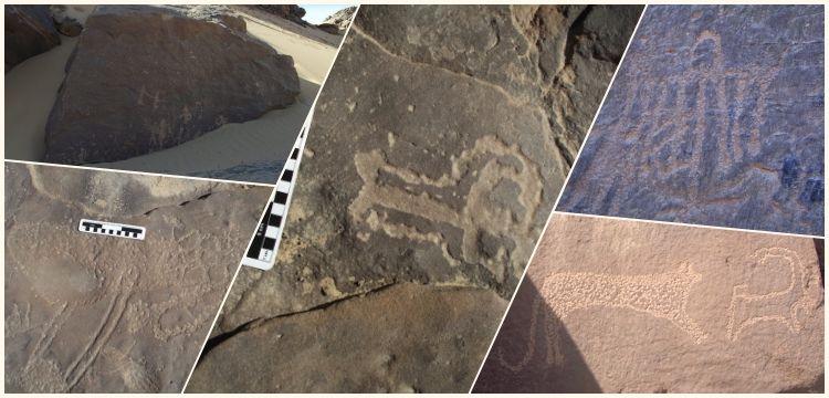 Mısır'ın Asvan kentinde Neolitik Çağ kaya resimleri bulundu