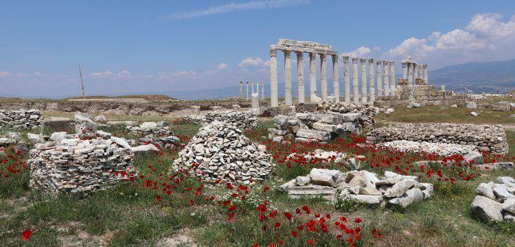 İki tiyatrolu Antik Kent Laodikya'da arkeoloji çalışmaları aralıksız sürüyor