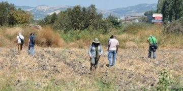 Myrina ve Gryneionda arkeolojik yüzey araştırmaları bu yıl da sürecek