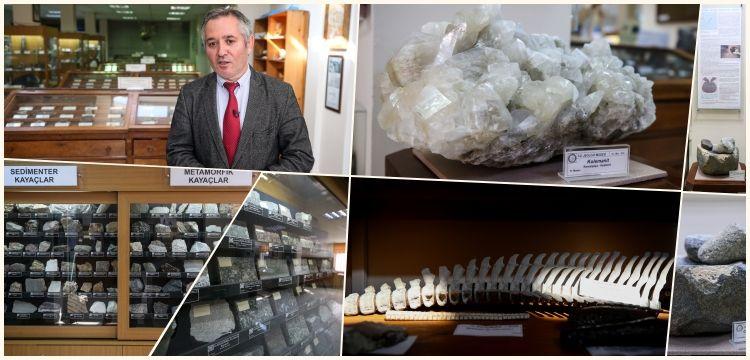 Cerrahpaşa Jeoloji Müzesi'nde 6 bini fosil 8 bin jeolojik olgu sergileniyor