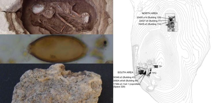 Ancient faeces reveal parasites in 8,000-years-old in Çatalhöyük