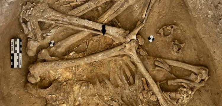 Çatalhöyük'te nüfus arttıkça şiddet olaylarının oranı da artmış