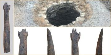 A human arm carved from wooden has been found in a well