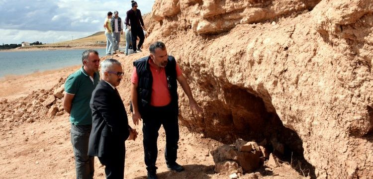Nearly 2.000 fossils were discovered in Anatolian province of Kirsehir