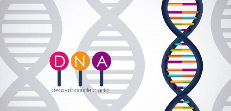 İsrail genetik üzerinden politik söylem yapınca, tartışma alevlendi