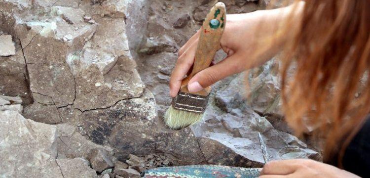 Kayseri'deki Barsama kazılarında da milyonlarca yıllık fosiller bulundu