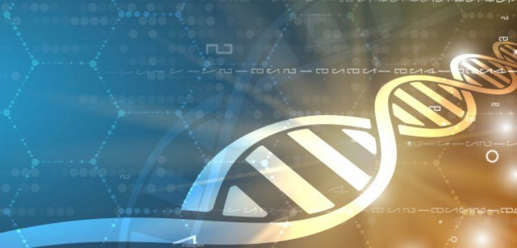 Altı bin yıl önce çiğnenen sakızdan insan genomuna ulaşıldı