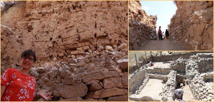 Zeyve Höyük'te 8 metre orijinal Hitit kerpici ve Roma evleri bulundu