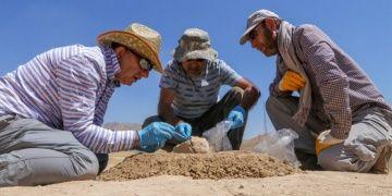 Urartuların niçin az yaşadığı Paleo mikrobiyoloji ile araştırılacak