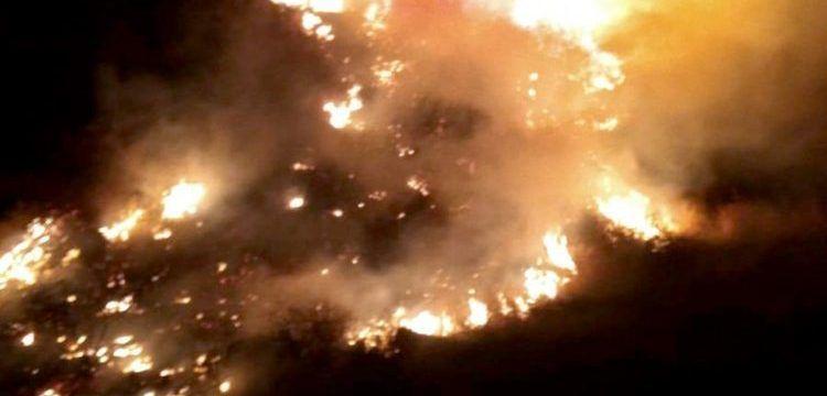 Antalyanın Kaş ilçesinde antik kentte yangın paniği