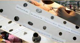 Bitlis Kalesinde Mısırdan gelmiş 30 gümüş sikke bulundu