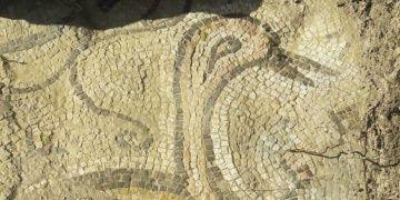 Besnide bir tarlada Bizans döneminden kalma ördekli mozaik bulundu