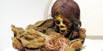 Michigan Devlet Üniversitesi, İnka Kızı mumyasını Bolivyaya iade etti