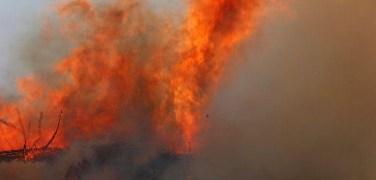 Idyros Antik Kenti'nde yangın paniği yaşandı