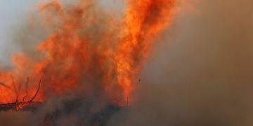 Idyros Antik Kentinde yangın paniği yaşandı