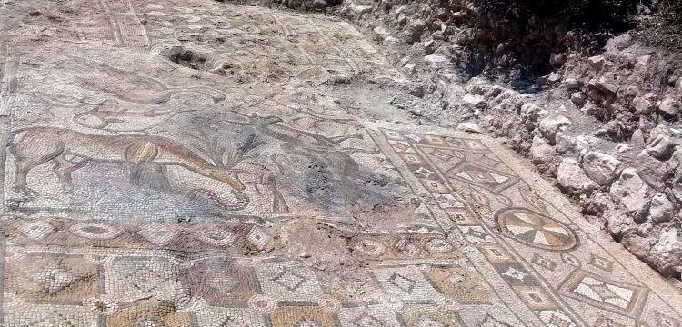 Cennet Sahnesi içeren Besni'deki ördekli mozaik müzeye taşındı