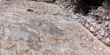 Cennet Sahnesi içeren Besnideki ördekli mozaik müzeye taşındı