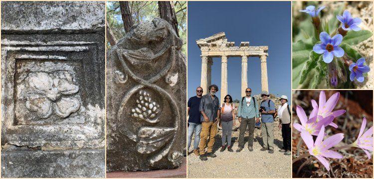 Antalya'nın 5 antik kentinin 5 nadide çiçeği proje ile korunacak