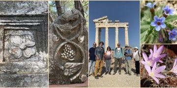 Antalyanın 5 antik kentinin 5 nadide çiçeği proje ile korunacak