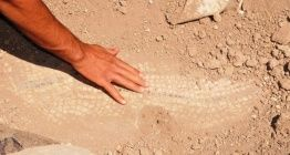 Mardinde definecilerin kazdığı alanda 1500 yıllık mozaik bulundu