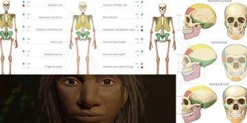 Altay İnsanının vücut anatomisi ve yüz hatları neye benziyordu?