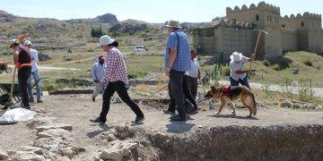 Ünlü arkeologun hayatını kurtardığı köpek kazı ekibinin bir parçası oldu