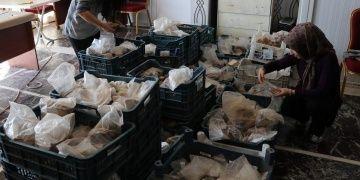 Harput Kalesinde 2019 arkeoloji kazıları sona erdi
