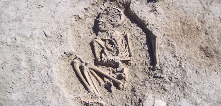 5700-year-old child skeleton found in Arslantepe