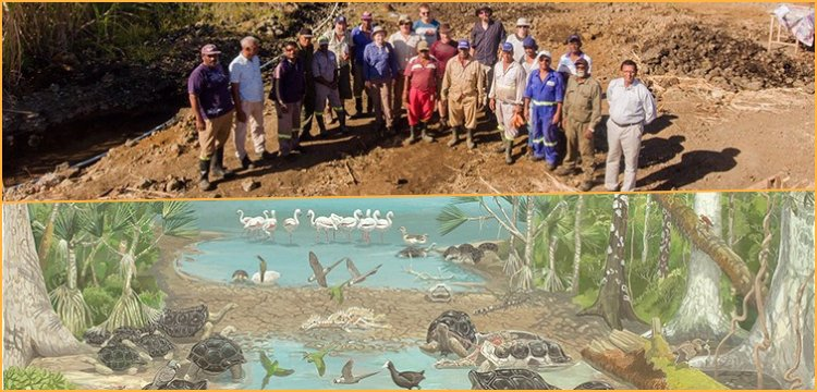 The swamp full of Dodo bird fossils turned out to be real