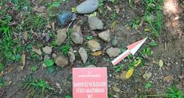 Bartındaki arkeolojik yüzey araştırmaları heyecanlandırıcı veriler içeriyor