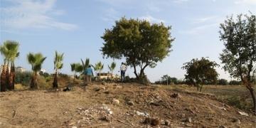 Astronominin kurucusu Aratosun Mezitlideki mezarını korumalıyız çağrısı