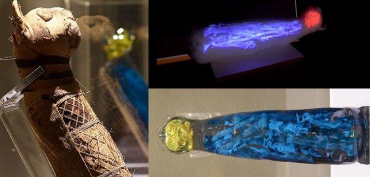 Antik Mısır kedi mumyasının içindekiler arkeologları şaşırttı