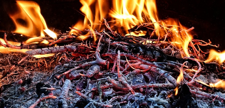 Neanderthals were able to control fire outside of the wildfires