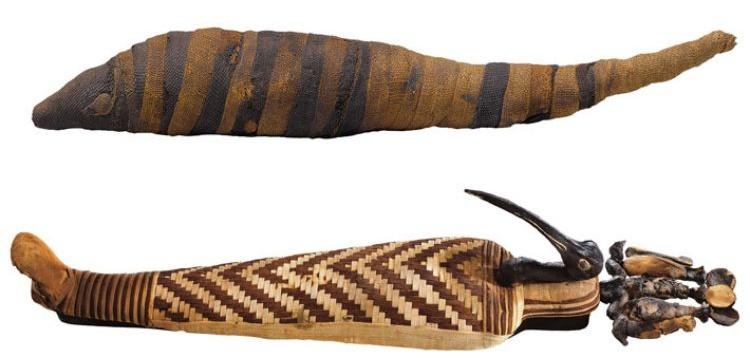 Antik Mısır'da İbis kuşları çiftliklerde yetiştirilmiş