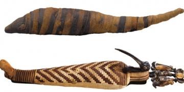 Antik Mısırda İbis kuşları çiftliklerde yetiştirilmiş