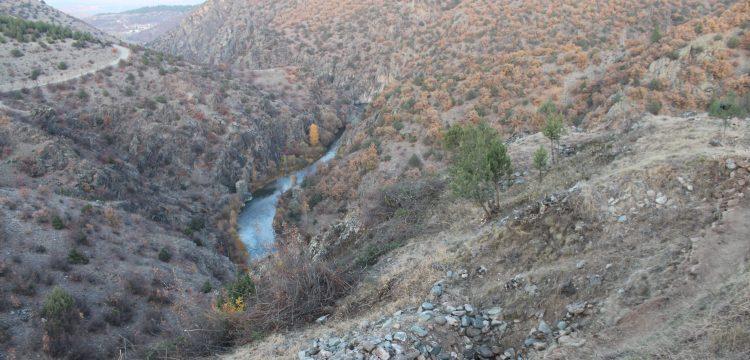 Tosya'daki defineci ziyaretgahı Gavur Kayalıkları'nda kazılar başladı