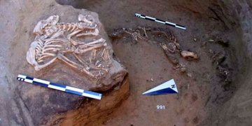 Sibiryada boynuzdan geyik kafası ve kemikten kuş figürü bulundu