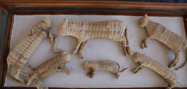 Sakkara'daki arkeoloji kazılarında 75 kedi mumyası bulundu