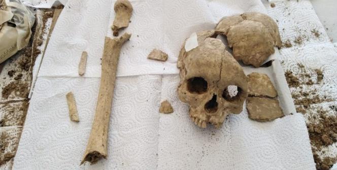 Şapinuva Antik Kentinde Hitit dönemine ait kafatası ve uyluk kemiği bulundu