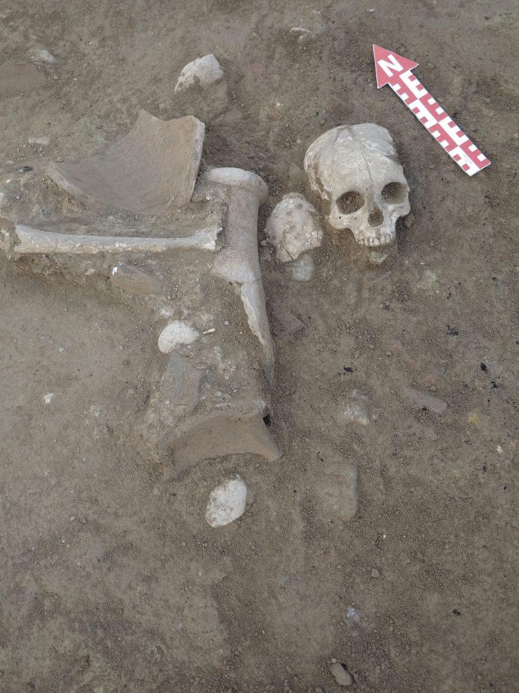 Şapinuva Antik Kenti'nde Hitit dönemine ait kafatası ve uyluk kemiği bulundu