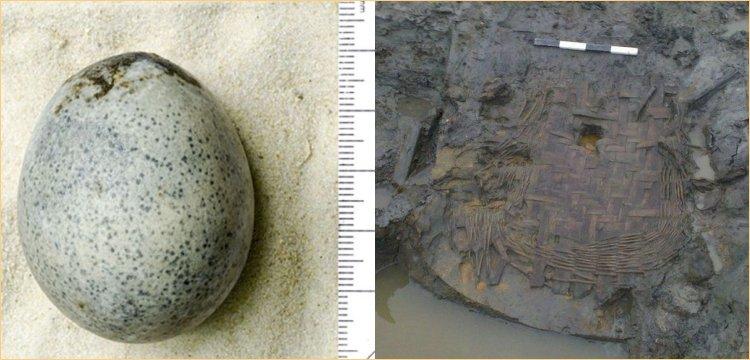 İngiltere'de 1.700 yıllık tavuk yumurtası ve sepet bulundu