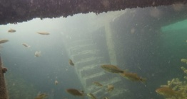 Rumkalenin su altında kalan bölümleri de ziyarete açılacak