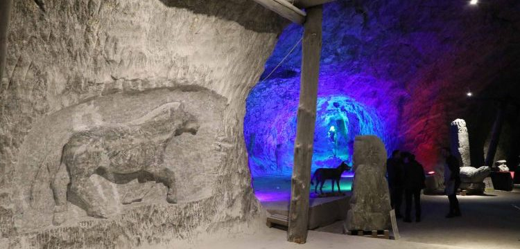Çankırı'da fosilleri bulunan tarih öncesi hayvanlar tuz mağarasına işleniyor