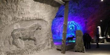 Çankırıda fosilleri bulunan tarih öncesi hayvanlar tuz mağarasına işleniyor