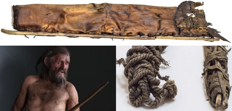 The oldest hunting equipment: Otzi's bowstring
